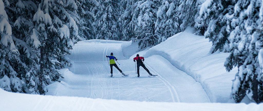 Cross Country Ski, Ski, Winter Sport