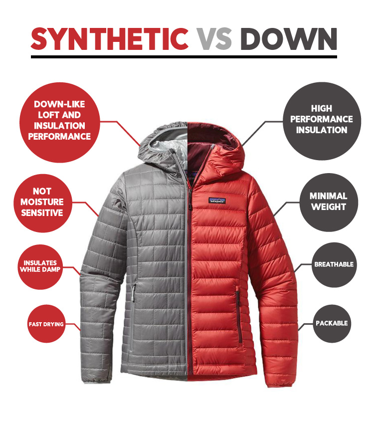 Synthetic vs Down Infographic