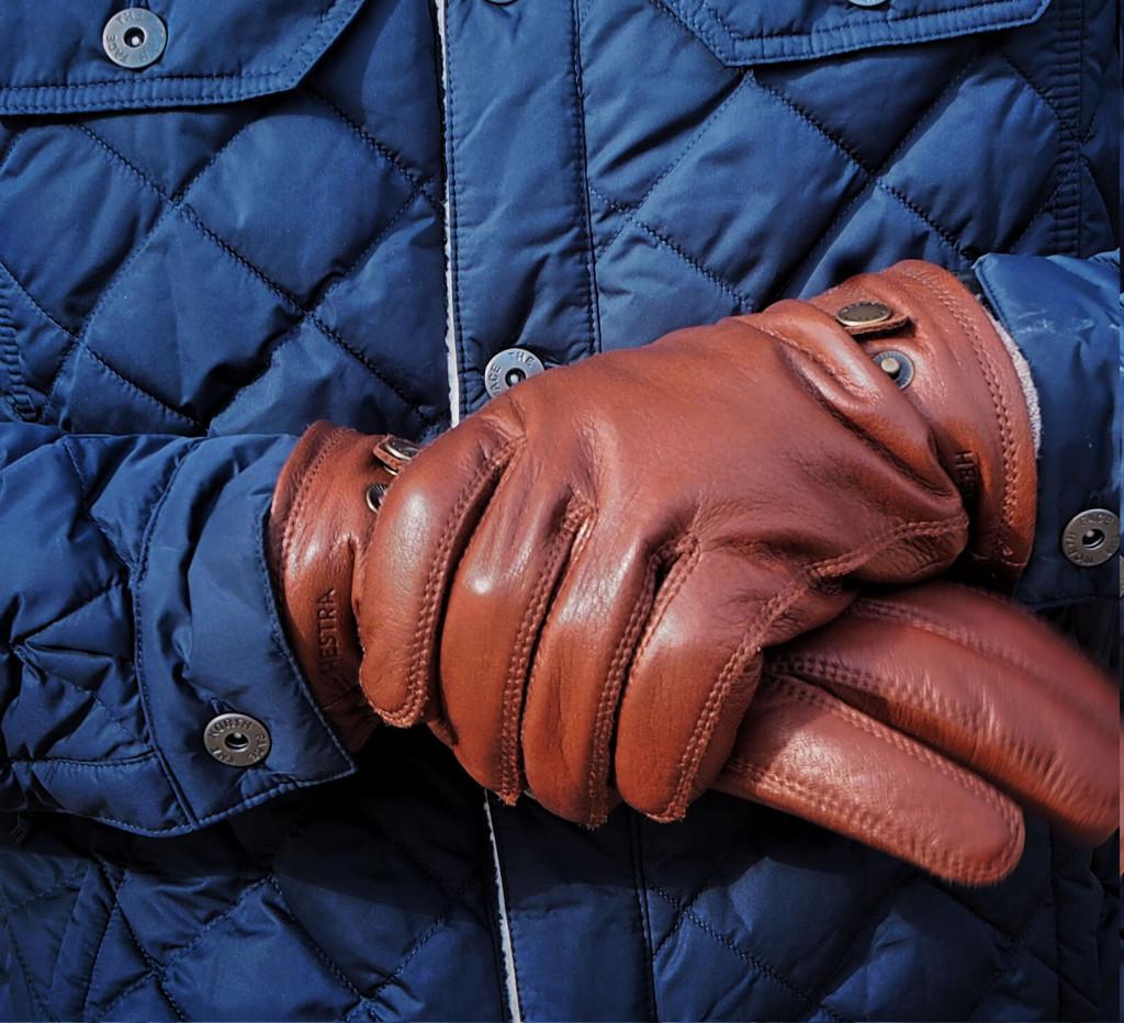 Hestra Men's Gloves Lifestyle